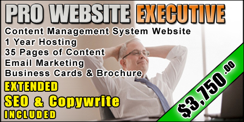 Web Design EXECUTIVE PACKAGE