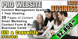 web-design-large-business-package